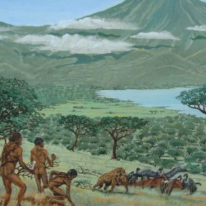 Painting of early man, Homo Habilus.