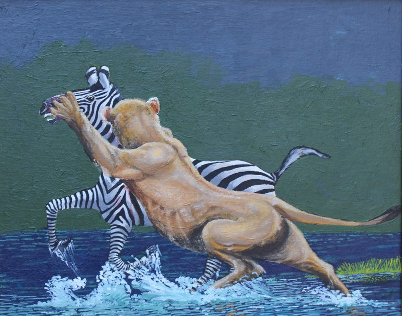Lion zebra painting of a lion taking down a Zebra.