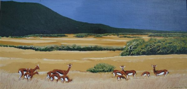 "Thomson's gazelle painting of ""Tommies"" grazing the Serengeti."