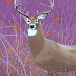 White tailed deer in the bush painting.
